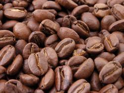 Zrnková káva ASO Vending