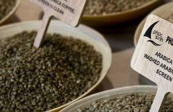 Čerstvo pomletá zrnková káva